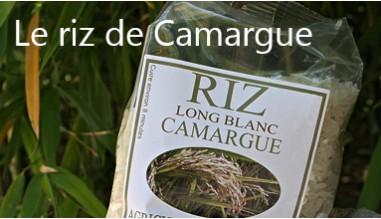 Le riz de Camargue