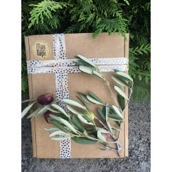 Coffret Cadeau AOP Vallée des Baux de Provence 2 X 0.50 L